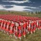 Alcatuirea armatei romane