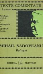Baltagul de Mihail Sadoveanu - caracterizarea Vitoriei Lipan