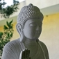 Budismul in India