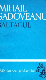 Caracterizare Gheorghita - Baltagul