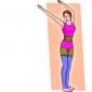 Clasificarea exercitiilor fizice