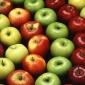 Conservarea fructelor prin uscare