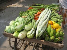Conservarea legumelor prin sterilizare in suc de rosii