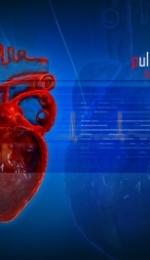 Despre bolile de inima
