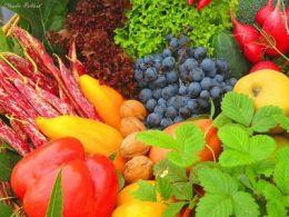 Despre regimul dietetic