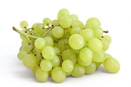 Despre vinurile albe de masa