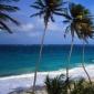 Exotismul Insulei Barbados