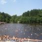 Lacurile terapeutice de la Sovata