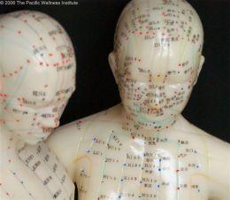 Meridianele si punctele acupuncturii