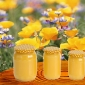 Mierea si Apicultura