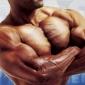 Muschii toracelui