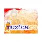 Muzica.ro - Termeni si conditii de utilizare