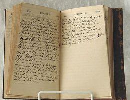 Pagina de jurnal