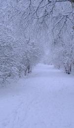 Pe scurt despre pastelul Iarna de Vasile Alecsandri