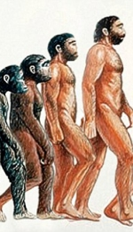 Referat - Evolutia Omului