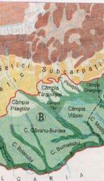 Referat despre Campia Romana