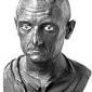 Referat despre Publius Cornelius Scipio Africanus si primul razboi dintre Roma si Cartagina,