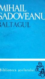 Reprezentarea artistica a lumii muntenilor in romanul Baltagul