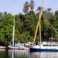 Revarsarea Nilului