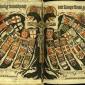 Sfantul Imperiu Romano-German