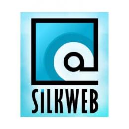 Silkweb.ro - 'Firma de web design din Baia Mare'