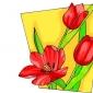 Trandafirii Roz Rezista Mai Mult