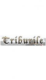 Tribal Wars: jocul browser numarul 1 din lume acum si in Romania