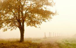 Clima si apele Podisului Dobrogei