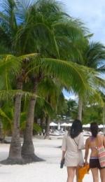 Insulele Filipine