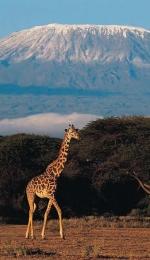 Kilimanjaro, cel mai inalt munte din Africa